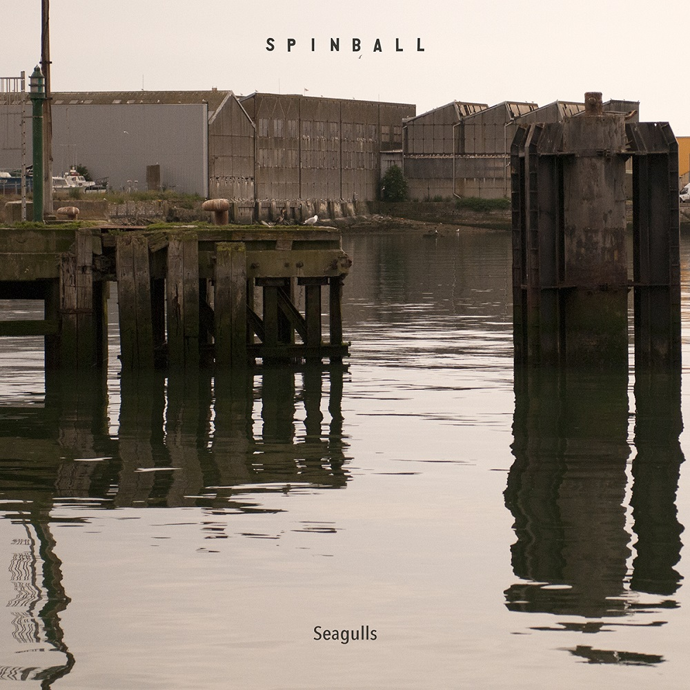 Spinball Seagulls Cover Small